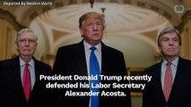 Donald Trump Defends Alexander Acosta Over Jeffrey Epstein Case (1)