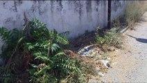 Καταγγέλλουν για αδιαφορία το δήμο οι κάτοικοι του Συνοικισμού στη Θήβα