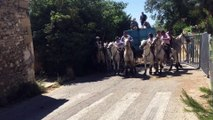 Théziers : les taureaux dans la rue pour la fête votive