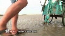 Voyage sur les côtes françaises : à la découverte de la Côte d'Opale