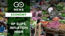 Inflation Up in June, IIP Slips In May