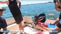 Vacances : immersion avec les contrôleurs maritimes