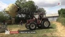 Sécheresse : les paysans s'inquiètent
