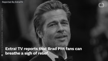 Hollywood Abuzz With Rumors That Brad Pitt Is Quitting Acting To Become Beekeepr