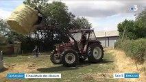 Les éleveurs en grandes difficultés face à la sécheresse