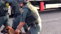 Découvrez les images très impressionnantes de l'arrestation d'un djihadiste en Espagne