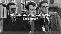 'Ghostbusters': Where Is The Cast Now?