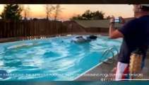 Earthquake: The Impressive Footage Taken Of A Swimming Pool During The Tremors