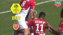 But Islam SLIMANI (39ème) / AS Monaco - Nîmes Olympique - (2-2) - (ASM-NIMES) / 2019-20