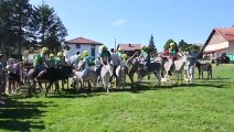 Le tiercé des ânes, moment fort de la fête de Fournets-Luisans