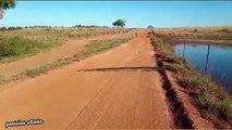 Un énorme anaconda traverse un chemin sous les yeux de ce brésilien