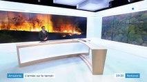 Amazonie : l'armée brésilienne tente d'éteindre les incendies