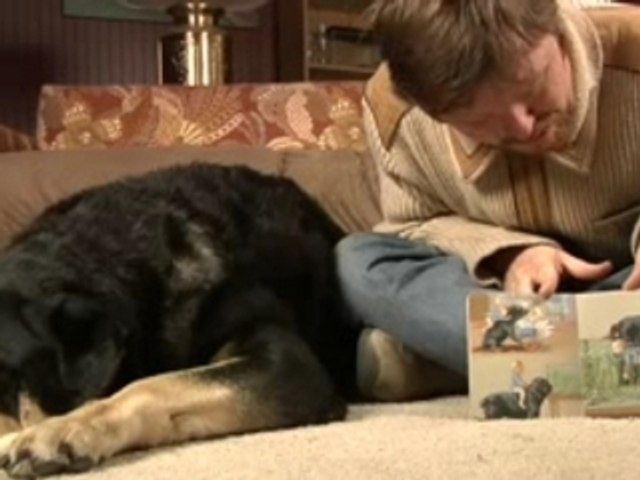 Reading with Carl the Rottweiler