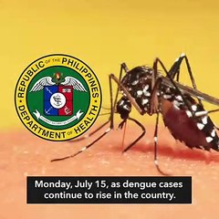 DOH declares national dengue alert
