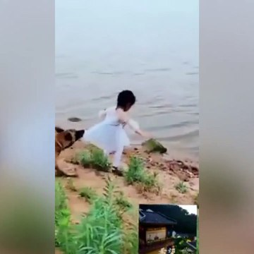 An heroic dog saves a girl from falling into the river