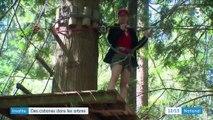 Vacances : des cabanes dans les arbres
