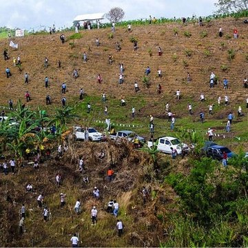 Before graduating, Philippines students have to plant 10 trees