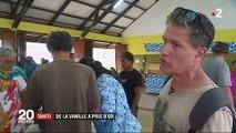 Tahiti : vanille polynésienne, un produit d'exception