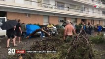 Trombe marine, tornade, arbres déracinés : une violente tempête balaye la baie de Bastia