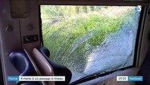 Marne : quatre morts dans une collision entre une voiture et un TER