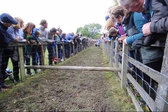 Sheep racing at Masham Sheep Fair