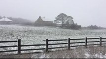 Snow falls in Yorkshire