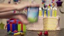 Ben & Jerry's birthday cake ice cream