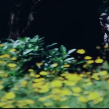 Top Vietnamese Movies  - Best Vietnam War Movies You Must Watch - Full Length English Subtitles_Part 02