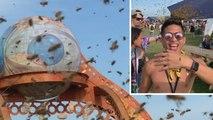 Un enjambre de abejas invade un festival de música