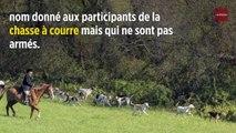 Rennes : cinq chasseurs à courre comparaissent pour violences aggravées