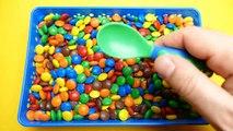 DIY How To Make Giant Edible Milk gummy Bear
