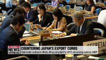 KIEP releases report outlining possible countermeasures to Japan's export curbs
