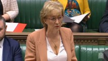 Andrea leadsom announces meaningful vote three
