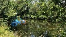 Campagne de lutte contre les plantes invasives, sur la Vendée