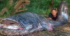 Un pêcheur a sorti un véritable monstre de l'eau: un silure de 2,58 mètres