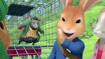 Pierre Lapin Saison 2 - Enfermés dans la cage - Noisette veut être un lapin