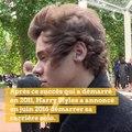 Alerte beau gosse : Harry Styles