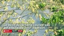 Le Zap Nouvelle-Aquitaine du 17 juillet