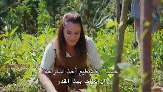 مسلسل الطائر المبكر الحلقة 48 قسم 3 مترجم للعربية
