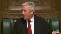 Parliament erupts after John Bercow makes personal comment about MP Greg Hands