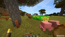 Cats Are Inferior - Minecraft Survival | Day 21