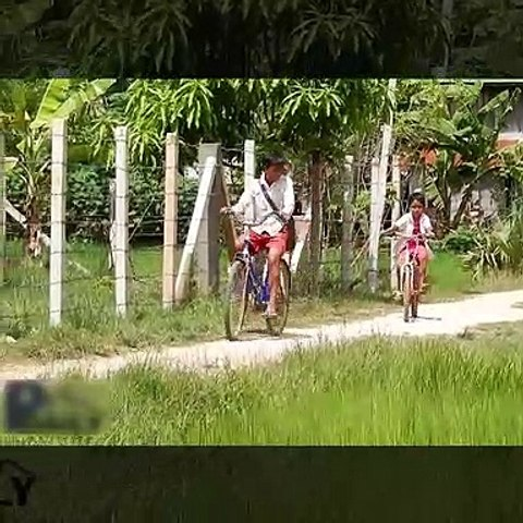 Terrifying! Brave Brothers Catch Big Snake while going to school