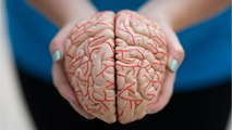 Scientists Say Parkinson's Research Should Focus On Two Brain Chemicals Instead Of One