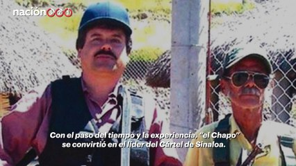 El auge y caída del Chapo Guzmán
