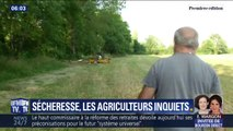 La sécheresse et les restrictions d'eau inquiètent les agriculteurs en Dordogne