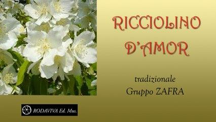 Gruppo Zafra - RICCIOLINO D'AMOR