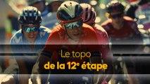 Tour de France - Les Pyrénées sont là ! Le topo de la 12e étape