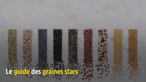Le guide du Point sur les bienfaits des graines
