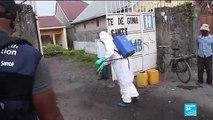 Épidémie d'Ebola en RDC : portrait d'un virus tueur