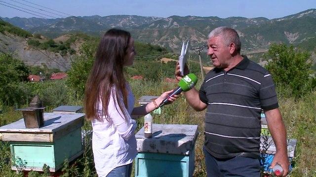 Insekticidet për rritjen e bletëve/ Bletërritësi nga Elbasani tregon alternativat ndaj amitrazit